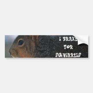 I Brake For Squirrels Bumper Stickers
