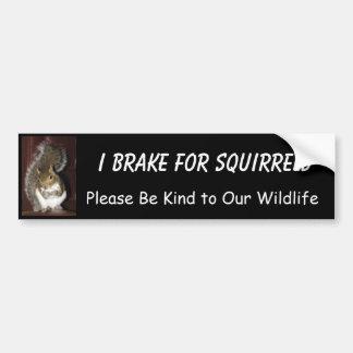 "I Brake for Squirrels featuring ""Summer"" Car Bumper Sticker"