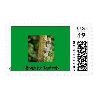I Brake for Squirrels Postage
