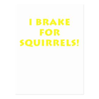 I Brake for Squirrels Postcard