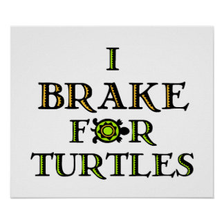 I Brake For Turtles 1 Poster