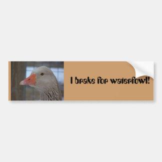 I brake for waterfowl! Bumper Sticker