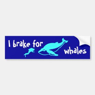 I brake for whales bumper sticker