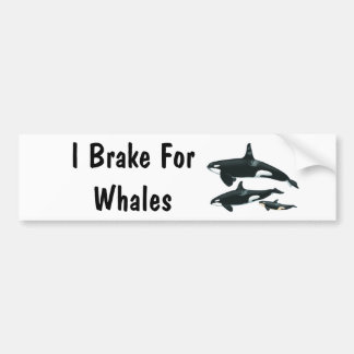 I Brake For Whales Car Bumper Sticker