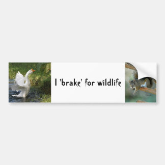 I brake for wildlife Goose Squirrel Bumper Sticker