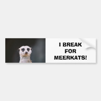 I Break for Meerkats! Bumper Sticker Car Bumper Sticker