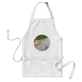 I brought breakfast! adult apron