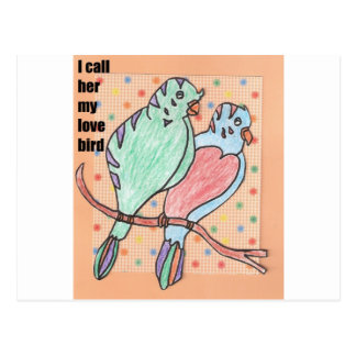 I call her my love bird postcard