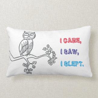 I came, I saw, I slept. Lumbar Pillow