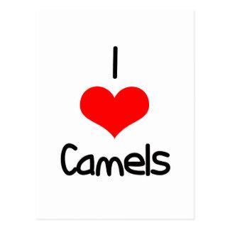 I camellos del corazón amor postales
