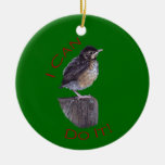 I Can Do It Double-Sided Ceramic Round Christmas Ornament