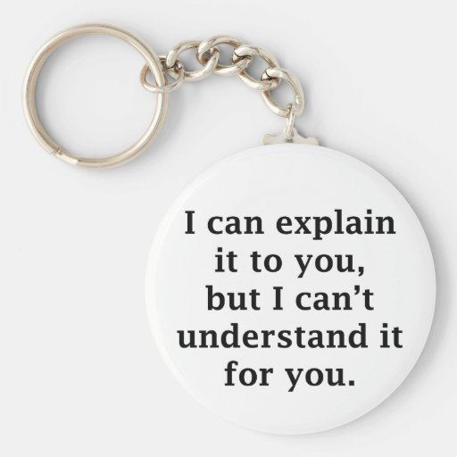 I Can Explain It To You Key Chains