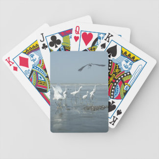 I can flying. Do you not know Customize Product Bicycle Playing Cards