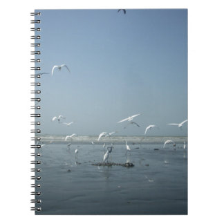I can flying notebook
