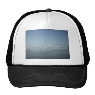 I can flying trucker hat
