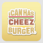 I Can Has Cheezburger (shadow) Square Stickers