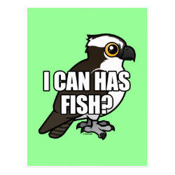 Funny i can has fish t shirts gifts with cute osprey for Where can i buy fish