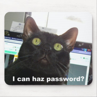 I Can Haz Password Cat Mouse Pad