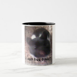 i can haz treet? Two-Tone coffee mug