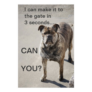 I can make it to the gate.... posters
