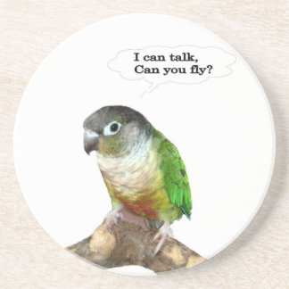 I can talk, can you fly? coaster