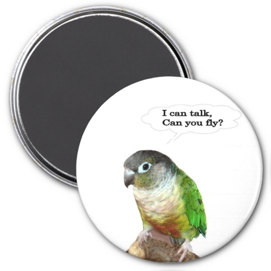 I can talk, can you fly? magnet