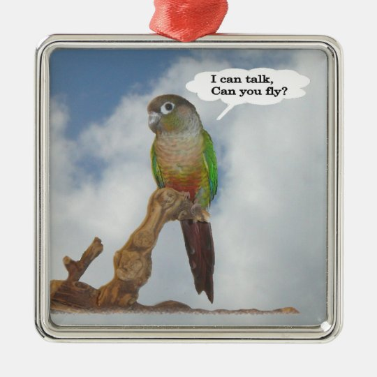 I can talk, Can you fly? Metal Ornament