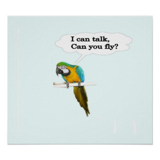 I Can Talk Poster