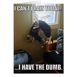 I Can't Brain Today. I Have The Dumb (cat) Card