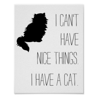 I can't have nice things. I have a cat. Poster