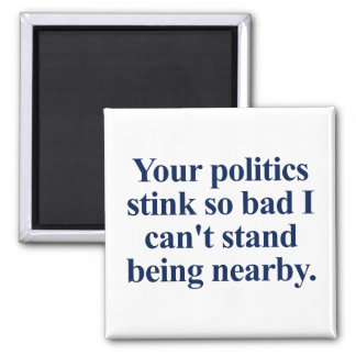 I can't stand your politics magnet