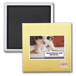 I chase bad fing awai 2 inch square magnet