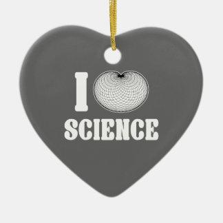 I ciencia del cardidoide adorno navideño de cerámica en forma de corazón