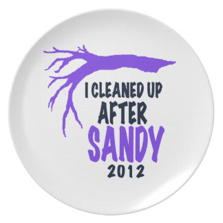 I CLEANED UP AFTER SANDY 2012 DINNER PLATE