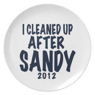 I Cleaned Up After Sandy 2012, Hurricane Sandy Dinner Plate
