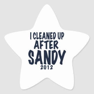 I Cleaned Up After Sandy 2012, Hurricane Sandy Star Sticker