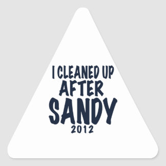 I Cleaned Up After Sandy 2012, Hurricane Sandy Triangle Sticker