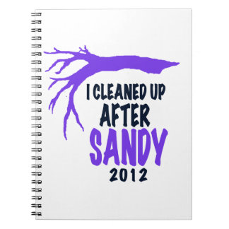 I CLEANED UP AFTER SANDY 2012 NOTE BOOKS