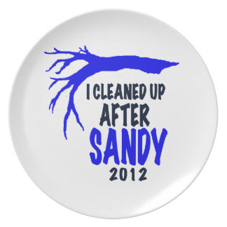 I CLEANED UP AFTER SANDY 2012 PLATE