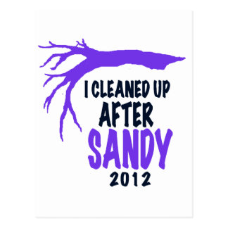 I CLEANED UP AFTER SANDY 2012 POSTCARD