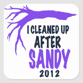 I CLEANED UP AFTER SANDY 2012 SQUARE STICKER