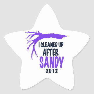 I CLEANED UP AFTER SANDY 2012 STAR STICKER