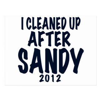 I Cleaned Up After Sandy, Hurricane Sandy gifts Postcard