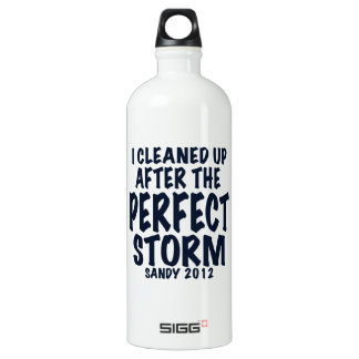 I Cleaned Up After the Perfect Storm, Sandy 2012, Aluminum Water Bottle