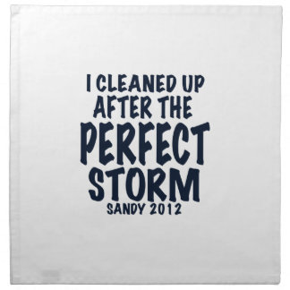 I Cleaned Up After the Perfect Storm, Sandy 2012, Napkin
