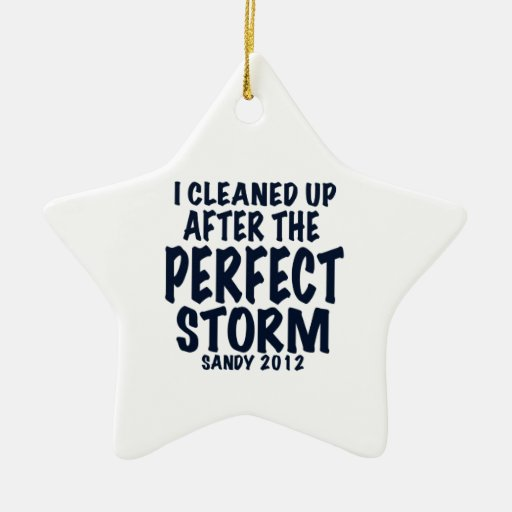 I Cleaned Up After the Perfect Storm, Sandy 2012, Christmas Tree Ornaments