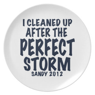 I Cleaned Up After the Perfect Storm, Sandy 2012, Party Plates