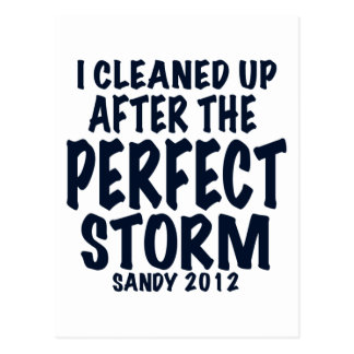 I Cleaned Up After the Perfect Storm, Sandy 2012, Postcard