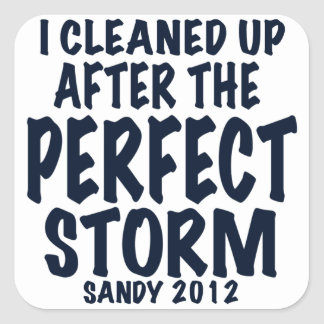 I Cleaned Up After the Perfect Storm, Sandy 2012, Square Sticker