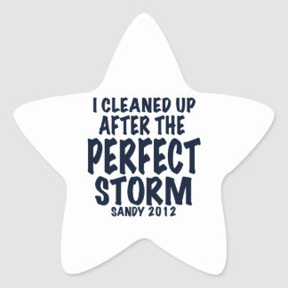 I Cleaned Up After the Perfect Storm, Sandy 2012, Star Sticker